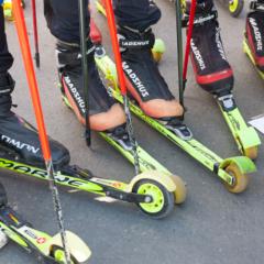 Как выбрать лыжероллеры